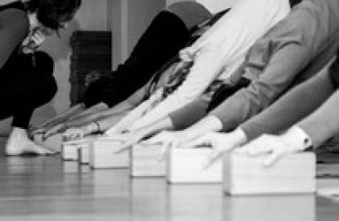 yoga poses in yoga workshop